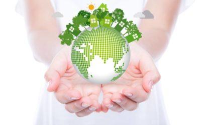 Így csökkentse vállalkozása karbon lábnyomát